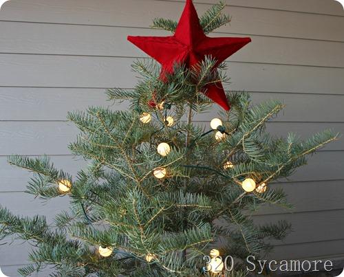 tree with globe lights