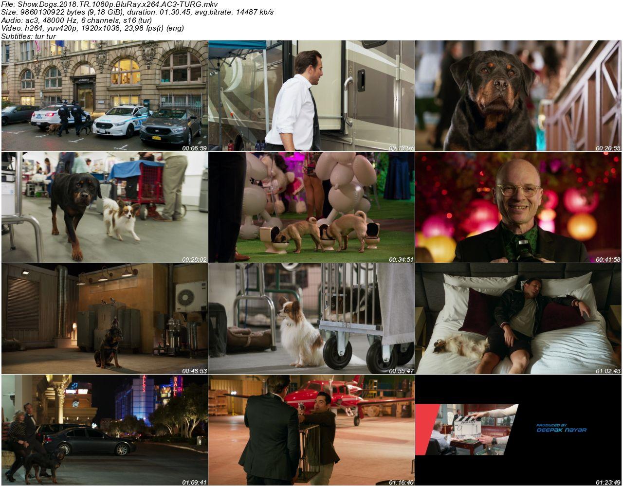 Show Dogs 2018 - 1080p 720p 480p - Türkçe Dublaj Tek Link indir