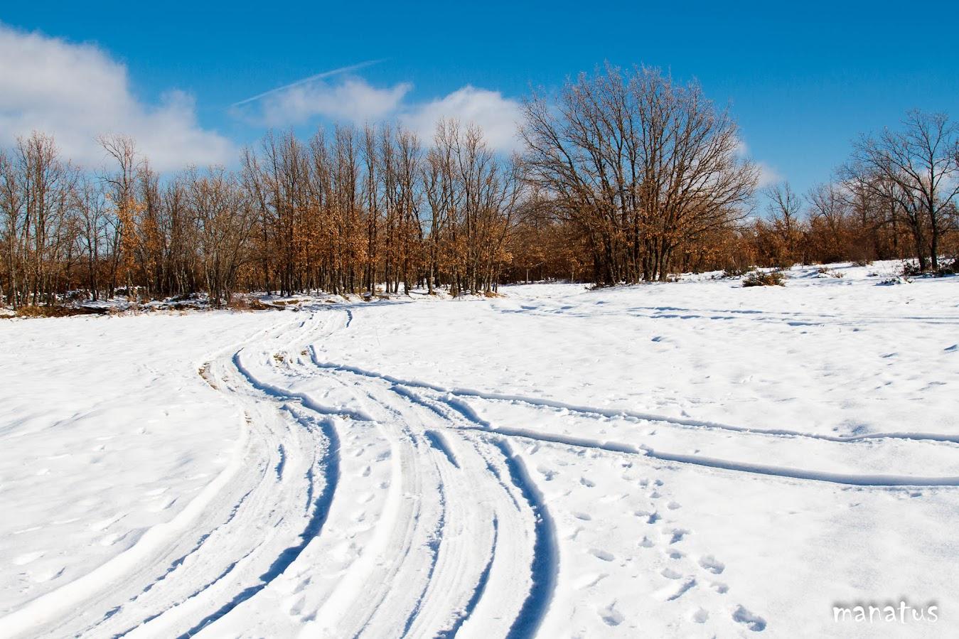 manatus rodadas nevadas