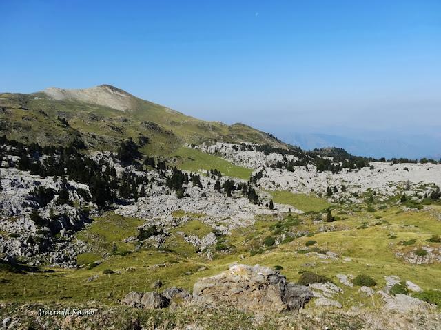 passeando - Passeando pela Suíça - 2012 - Página 27 DSC03487