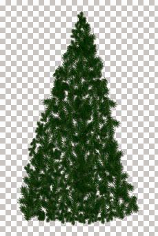 dcschristmastree2001.jpg
