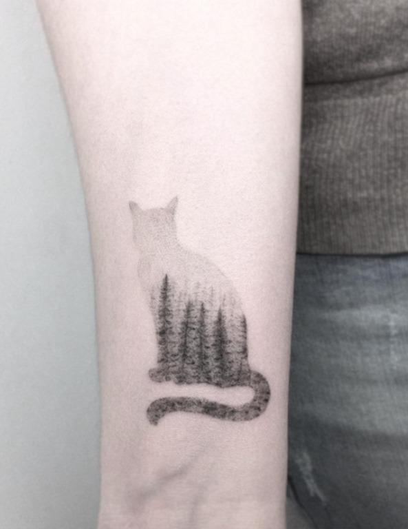 este_gato