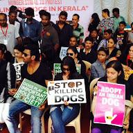 Stop Dogs Killing