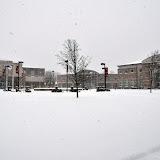 UACCH Snow Day 2011 - DSC_0013.JPG
