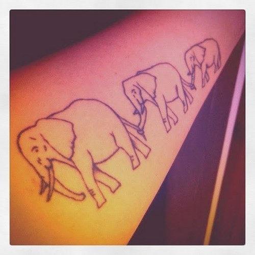 elefante_tatuagens_28