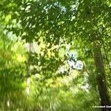 2011-09-25 - 331.JPG