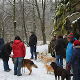 01. Januar 2016: Neujahrswanderung ins Waldnaabtal - IMG_1509.JPG