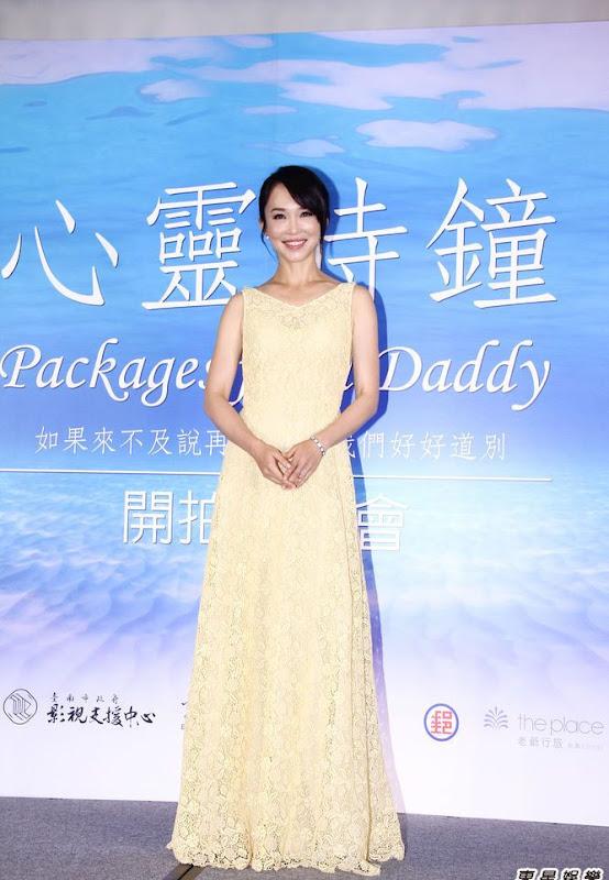 Fann Wong / Fann Woon Fong / Fan Wenfang Singapore Actor