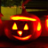 Halloween activiteit Leeuwkes