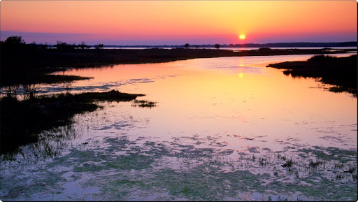 Marshlands Sunset, Assateague Island, Maryland.jpg