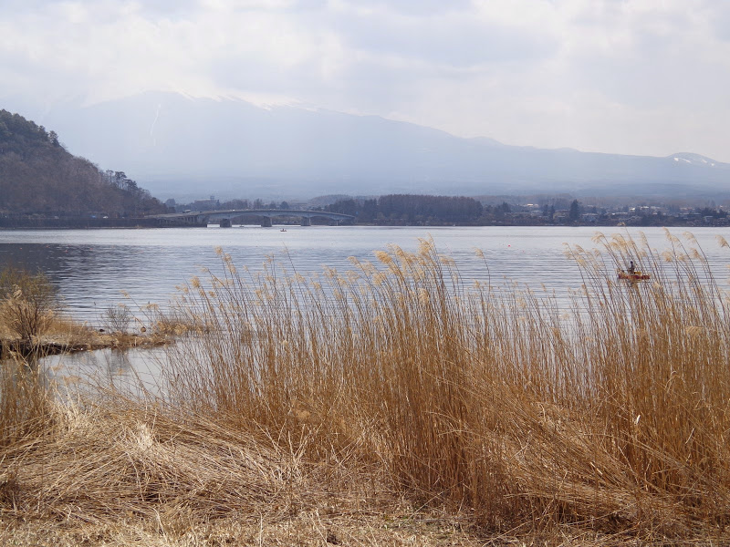 2014 Japan - Dag 11 - marjolein-DSC03569-0050.JPG