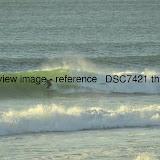 _DSC7421.thumb.jpg