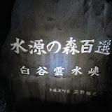屋久島(1)白谷雲水郷~縄文杉