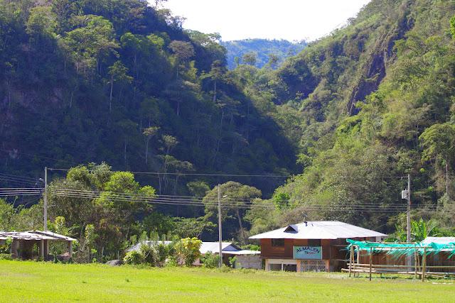San Miguel de Chontal (Imbabura, Équateur), 11 décembre 2013. Photo : J.-M. Gayman
