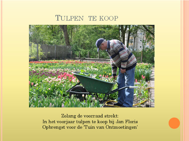 Jaaroverzicht 2012 locatie Hillegom - 2070422-22.jpg