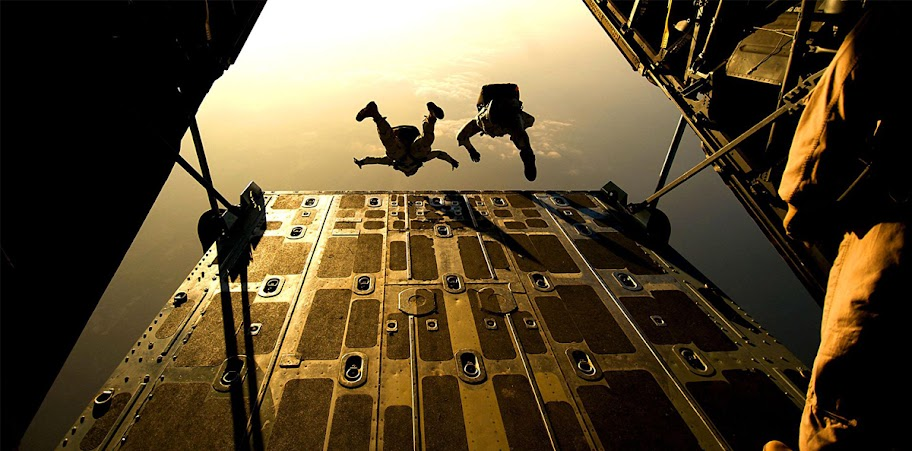 SkyDiving%252520Couple