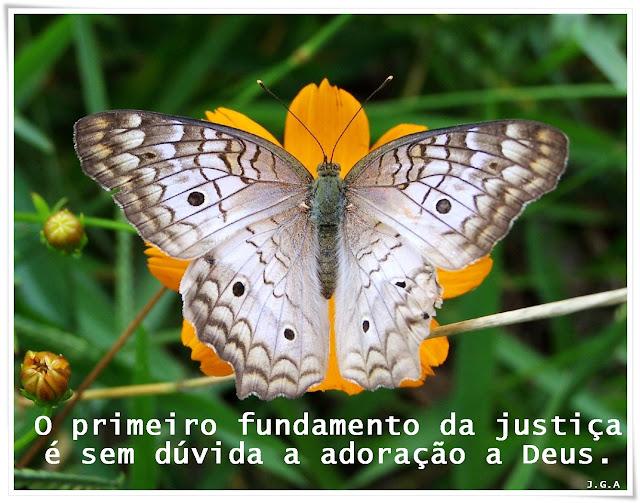 COMPROMÍSSO CRÍSTÃO - 03