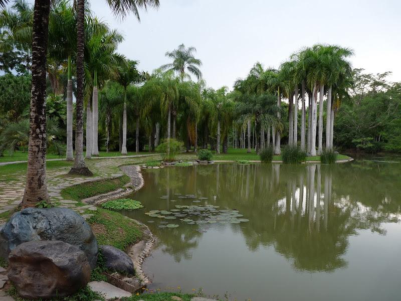 Chine .Yunnan . Lac au sud de Kunming ,Jinghong xishangbanna,+ grand jardin botanique, de Chine +j - Picture1%2B656.jpg