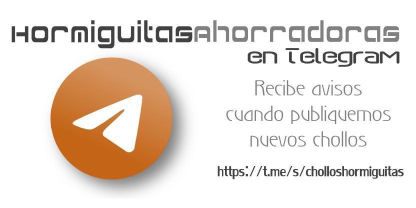 canal de telegram @cholloshormiguitas