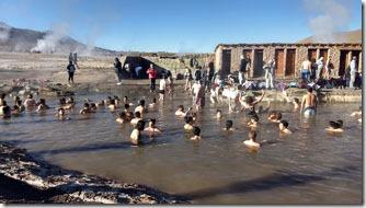 Geiseres-del-Tatio-banho-piscina-Atacama-Chile-2--