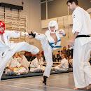 KarateGoes_0211.jpg