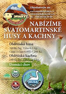 savatomartinska_hua_kachna_rijen_2013_005