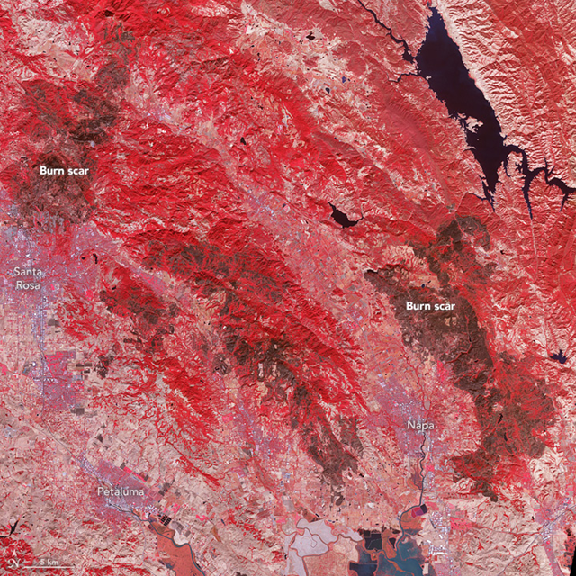 On 21 October 2017, the Advanced Spaceborne Thermal Emission and Reflection Radiometer (ASTER) on the Terra satellite acquired this false-color image of the burn scars left by the Tubbs(upper left), Nuns (center), and Atlas (lower right) fires. Unburned vegetation appears red; burned vegetation appears brown. Buildings, roads, and other developed areas appear light gray and white. Photo: Jesse Allen / NASA Earth Observatory