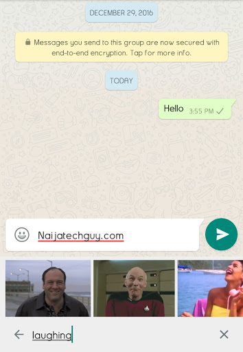 WhatsApp Adds GIF Search And Increases File Sharing Limit To 30 3