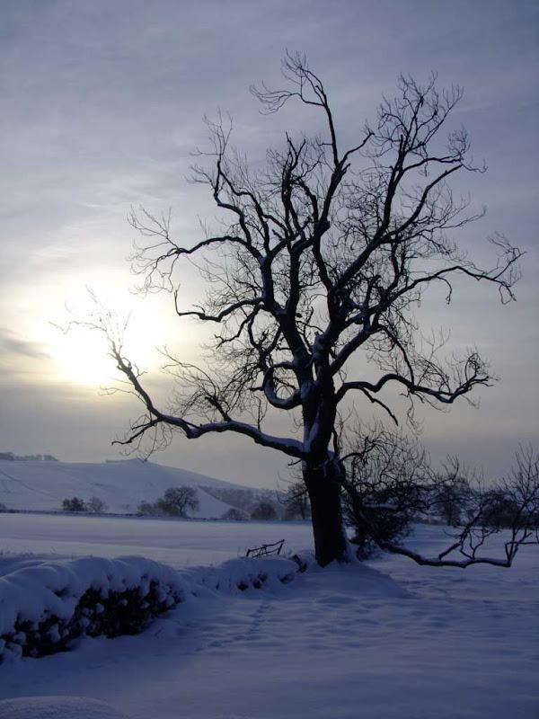 SnowSS4