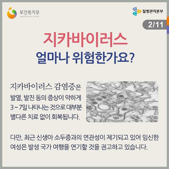 지카바이러스-증상.jpg