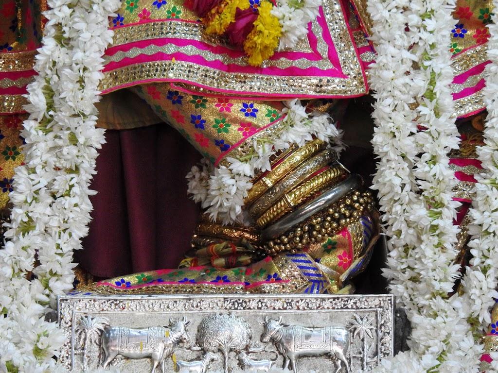 Radha Govind Devji Deity Darshan 10 Jan 2017 (7)