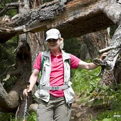Wanderung Rosengarten 09.06.17-8850.jpg