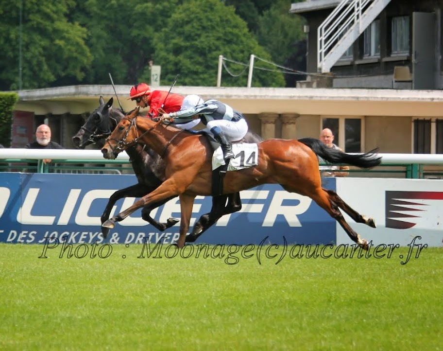 Photos Longchamp 25-05-2014 IMG_1167