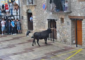 vaquillas santa ana 2011 171.JPG