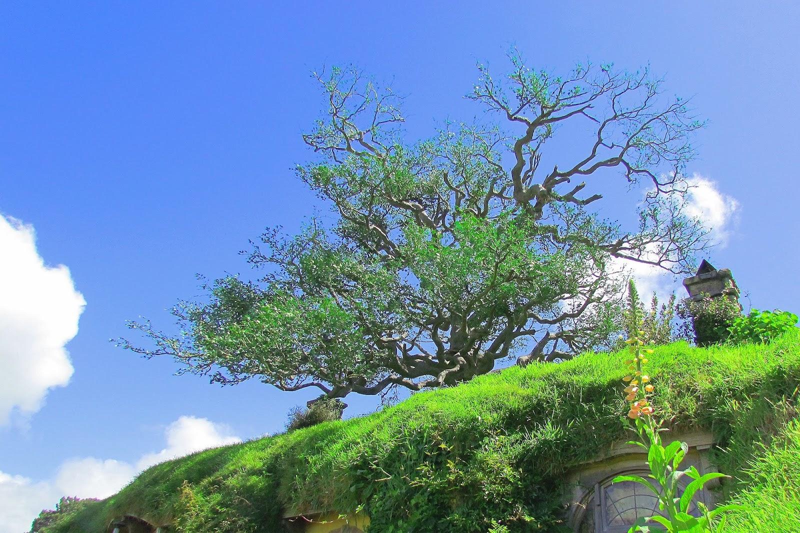 Hobbiton - the Metal Tree.jpg