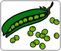 คำศัพท์ภาษาอังกฤษ_pea_Vegetable