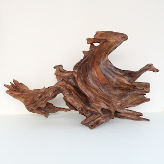 Don B. Signed Sculptural Driftwood