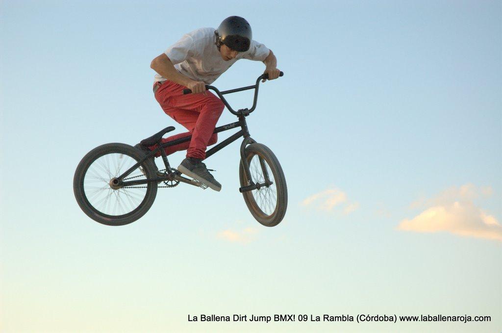 Ballena Dirt Jump BMX 2009 - BMX_09_0154.jpg