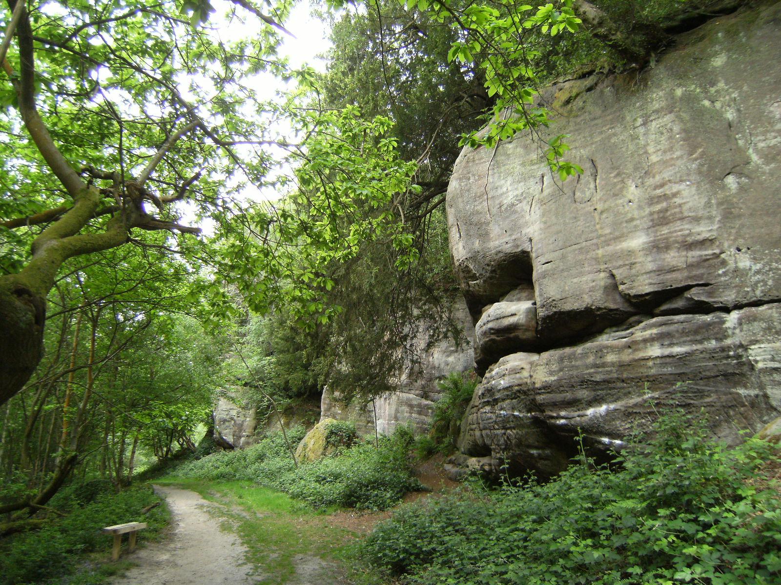DSCF7986 Eridge Rocks