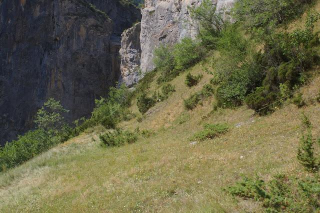 Le Châtelet : biotope de Parnassius apollo et de nombreux satyridae. À droite (vers le sud) : l'Ubaye. 9 août 2009. Photo : J.-M. Gayman