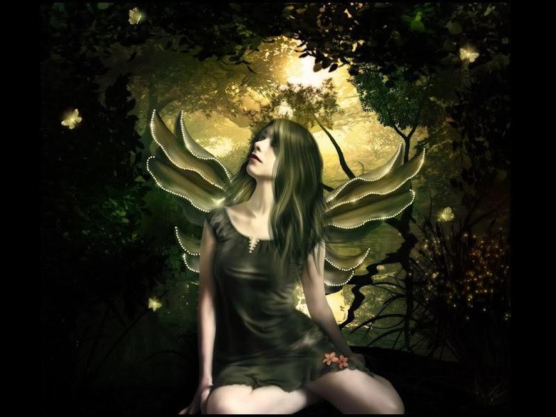 Shinning Butterfly Fairy Wallpaper, Fairies Girls