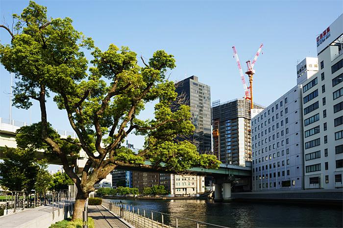 Osaka26.jpg