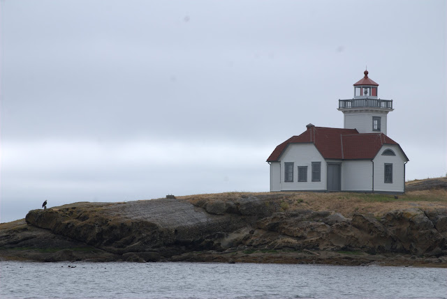 An eagle stands guard outside the Patos Island Lighthouse. / Credit: Bellingham Whatcom County Tourism