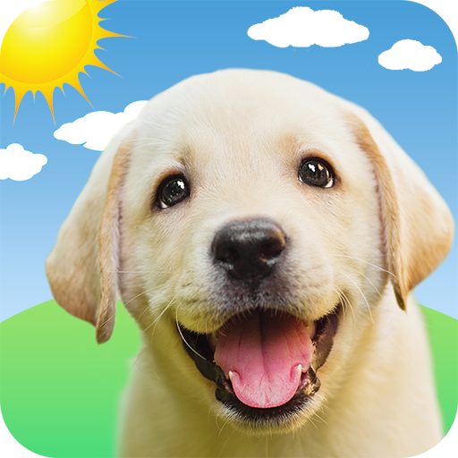 Weather Puppy: Real Time Weather Forecast & Radar - Google