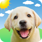 Weather Puppy App Widget Weather Forecast Apps On Google Play