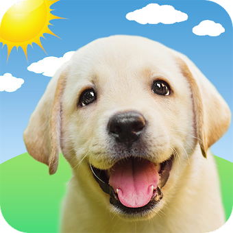 Weather Puppy - Forecast, Radar & Pet Dog Pictures