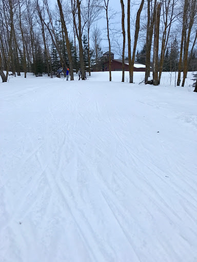 Renovated frozen granulated (corn) snow on the skate decks. Enough loose on top of firm base for edging. Fun skiing!