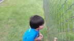8.7.15 Outdoor Play Gary Gecko Hunting 2.jpg
