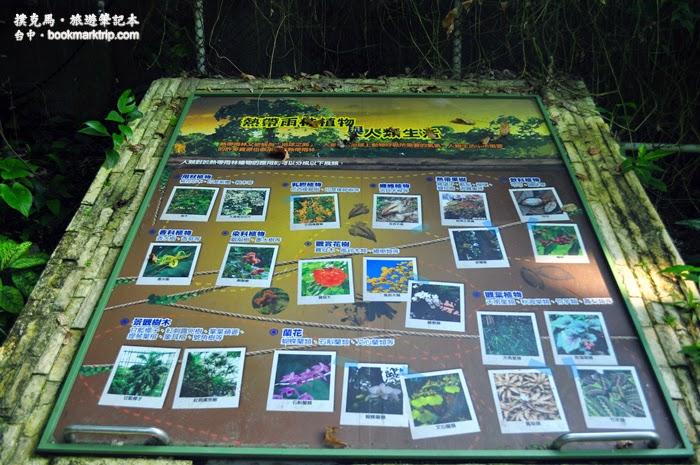 科博館植物園熱帶雨林溫室