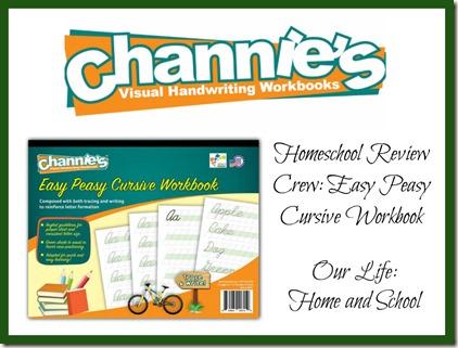 Channie's Workbook Review